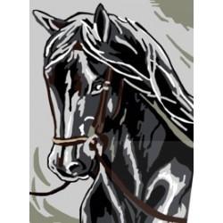 Koń kary