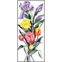 Tulipany i irysy