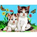 Koty na łące